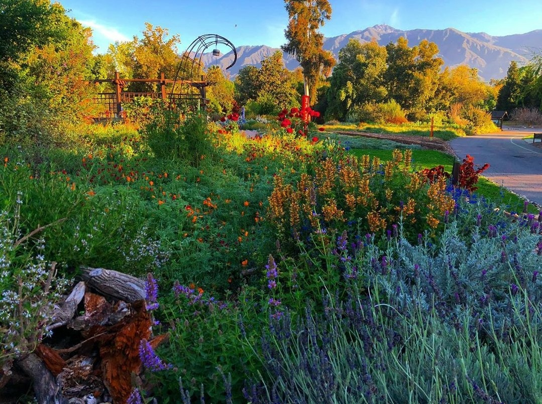 The Arboretum Membership - Family Plan - Image 1