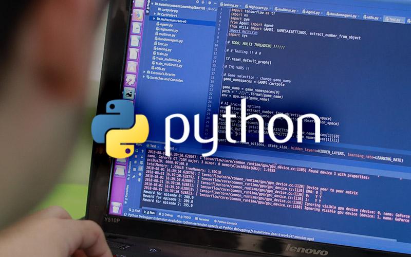 Python Tutoring - 4 classes/month