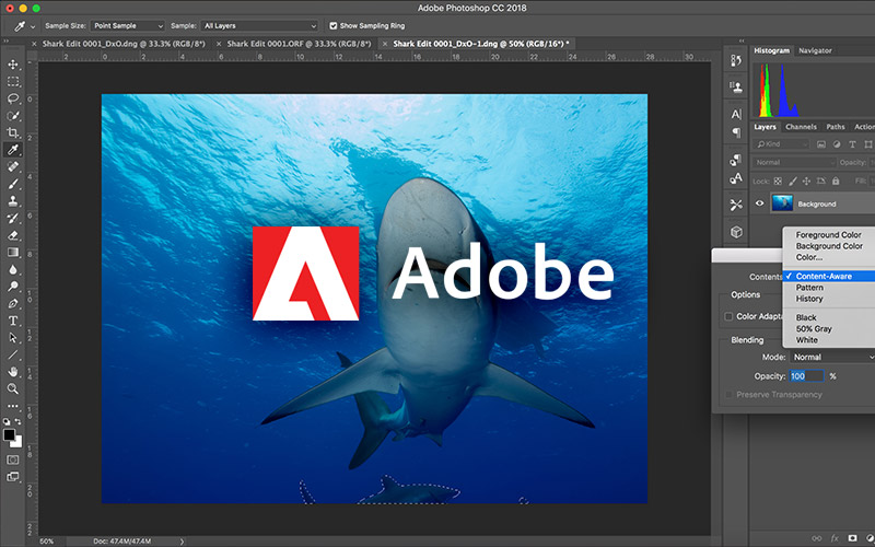 Photoshop Tutoring - 4 classes/month - Image 1