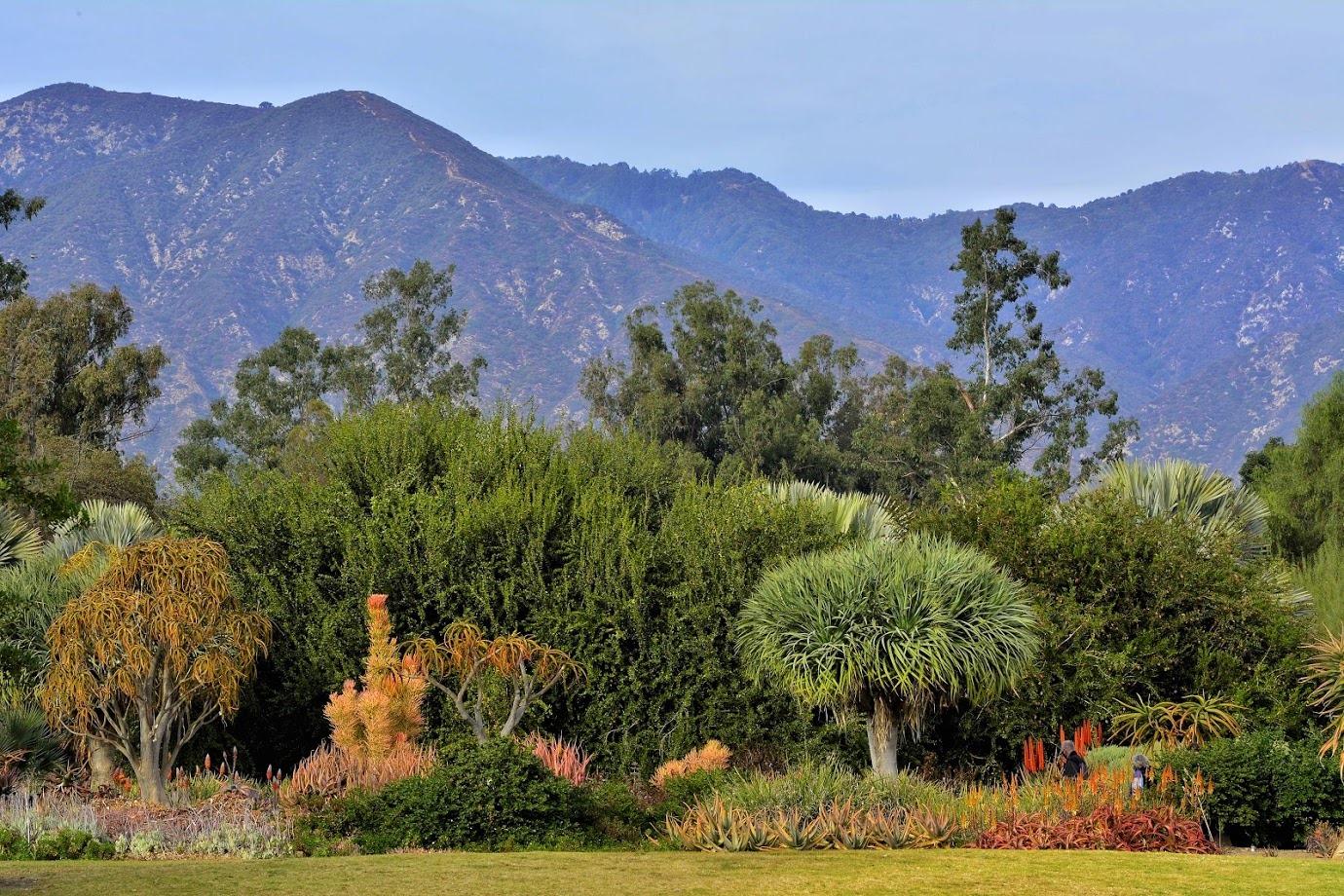 The Arboretum 1-Year Membership - Family Plan - Image 1