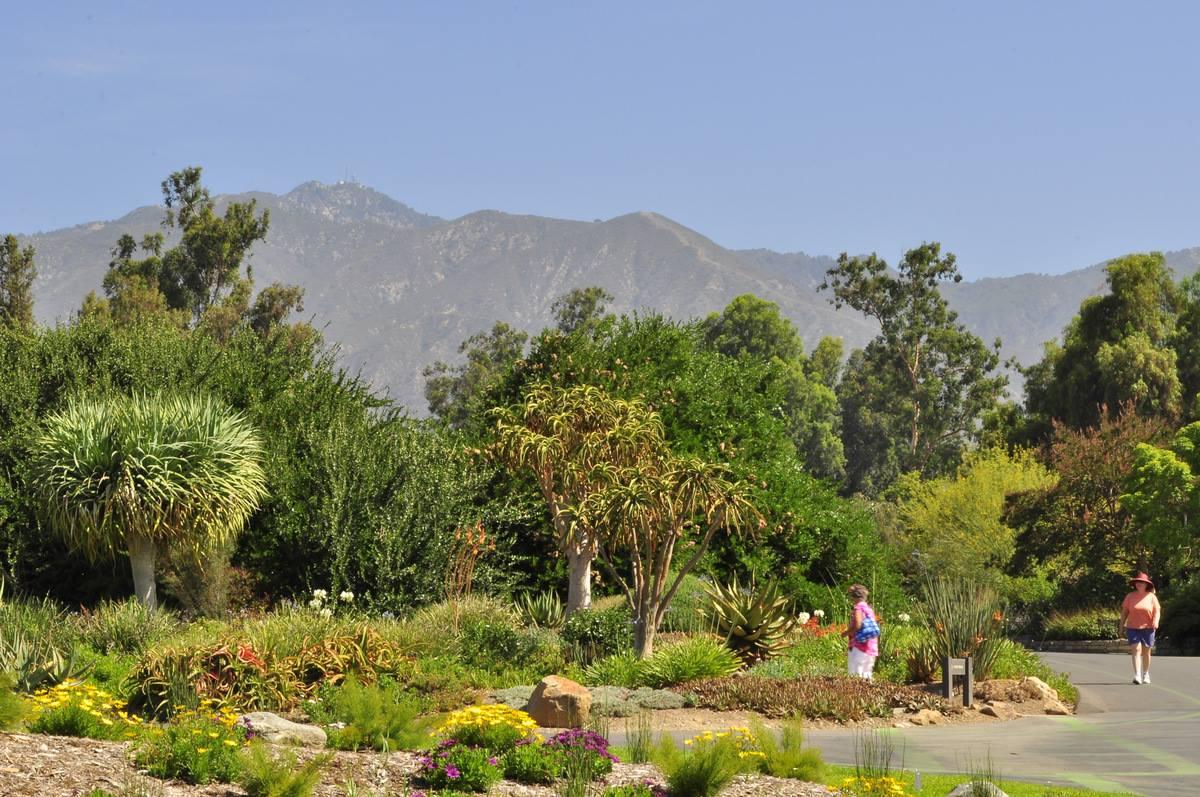 The Arboretum 1-Year Membership - Student/Teacher Plan - Image 1